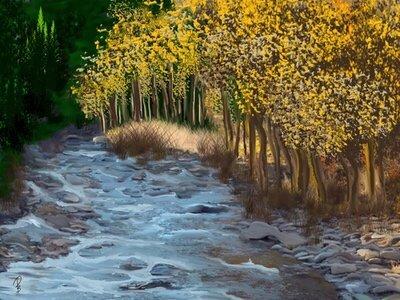 La vita come un fiume